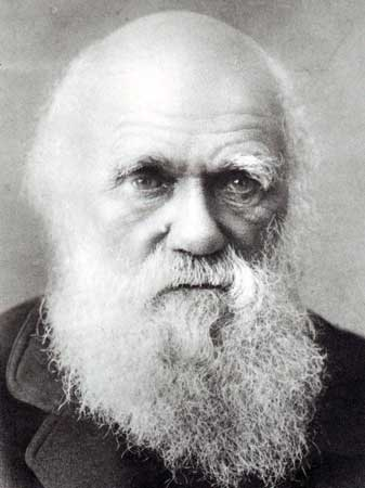 darwin-as-an-old-man-337-450-17